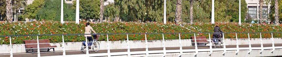 Animo Valencia - Visite guidée à vélo des quartiers de Valencia